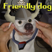 friendly dog